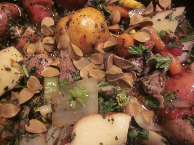 Wild Stew W Beech Nuts