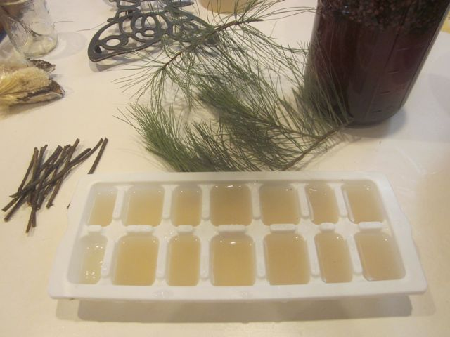Pine needle popsicles