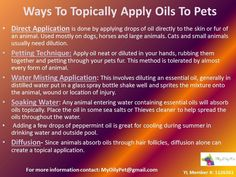 Applying oils to pets