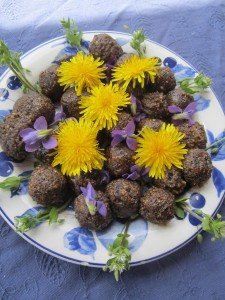 Dandelion coffee grounds in this energy balls makes them extra special!