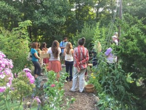 Plant walk with Marc